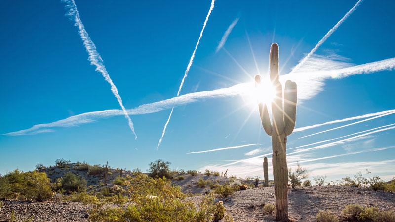 ola-de-calor-en-Phoenix-Arizona1