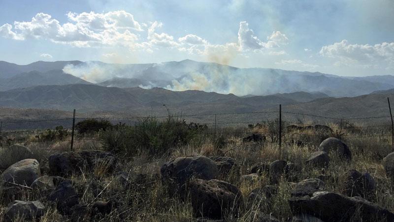 principal-incendio-en-rattlesnake-arizona1