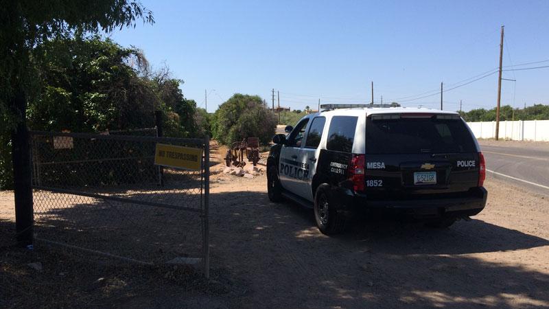 principal-policia-en-arizona