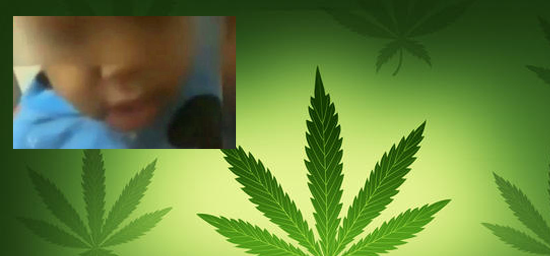tlmd_marihuana_composite02