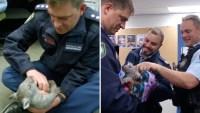 Video: policías adoptan a tierno animalito como mascota del cuartel