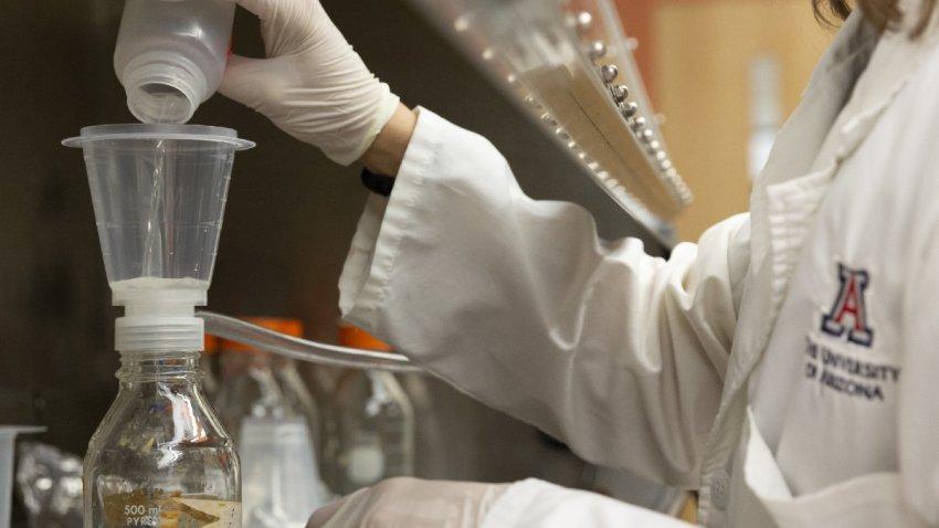 Universidades de Arizona se unen para detectar mutaciones de COVID-19