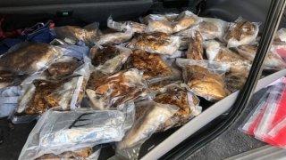 Decomisan 60 libras de metanfetamina escondidos en asiento de auto