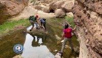 Apache Canyon: el guardián de los secretos en Arizona