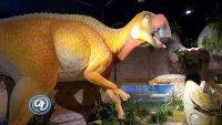 Un viaje al pasado de Sonora y Arizona en la nueva exhibición del Museo de Historia Natural
