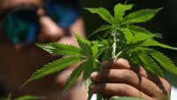 México podría hacer un gran negocio si saca del limbo legal el uso lúdico de la marihuana