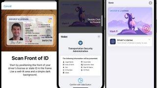 Licencia digital en Arizona: ¿Cómo será el proceso para obtenerla?