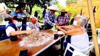 En video: municipio de Morelos busca reactivar la economía mediante el cultivo de marihuana