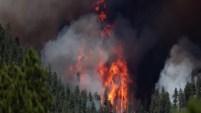 Las autoridades forestales informaron que se informa que el incendio ha consumido 1,000 acres y continúa creciendo.