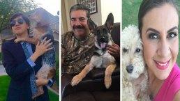 Fotos: Arizonenses comparten fotos con su mascotas