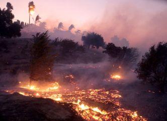 Incendios en California dejan al menos tres muertos