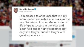 Trump nomina a Scalia como nuevo secretario del Trabajo