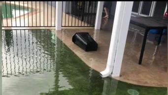Prevención por inundaciones en Tucson