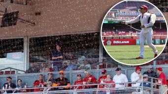 ¡A esconderse! Abejas irrumpen en juego de béisbol