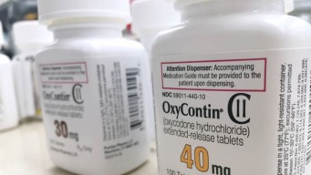 Purdue se declara en quiebra entre pelea por opioides