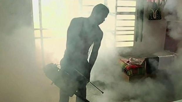 [TLMD - MIA] Cuba reconoce aumento en casos de dengue
