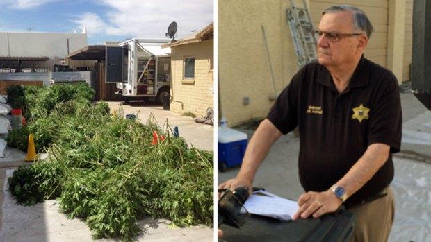 Fotos: Encuentran cultivos de marihuana en Arizona