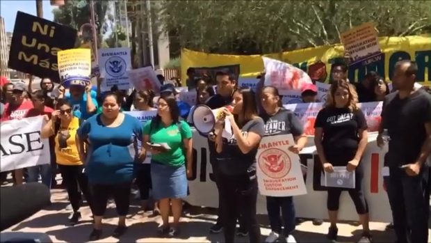 [TLMD - AZ] Video: Protestas y decepción en Arizona tras bloqueo de Acción Ejecutiva