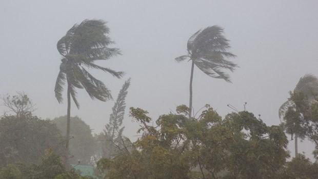 Estas son las categorías de los huracanes y sus efectos