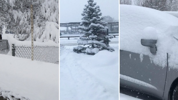 En fotos: tormenta invernal cubre de blanco el norte de Arizona