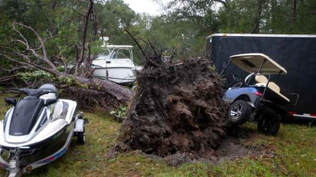 En imágenes: Michael, el peor huracán en los últimos 25 años
