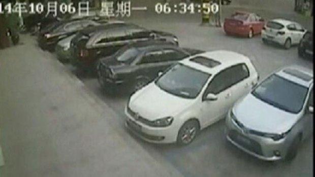Video: El conductor más torpe del mundo