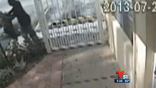 Video: Video: Mujer se defiende de ladrón