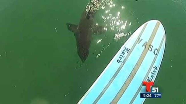 Video: Surfista vive momentos de terror