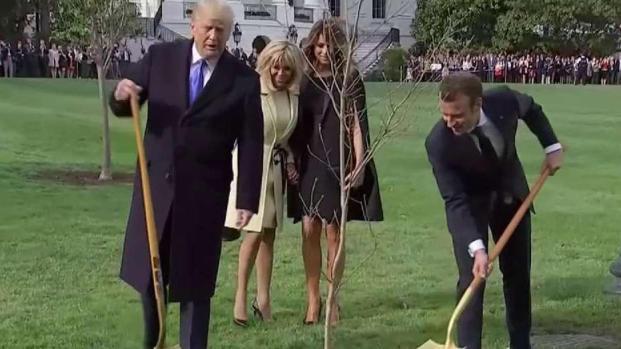 Trump y Macron se reúnen en la Casa Blanca