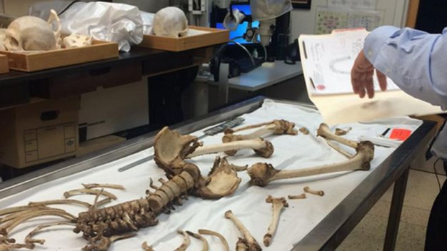 Buscan identificar cadáveres de posibles inmigrantes