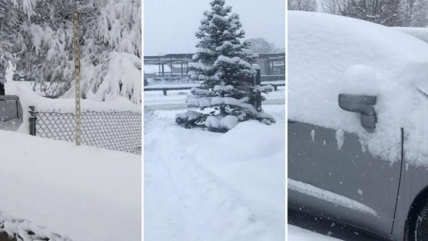 En fotos: tormenta invernal cubre de blanco el norte de Arizona