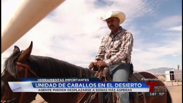 Video: Utilizan caballos para vigilancia en frontera