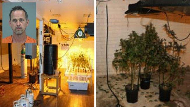 Encuentran sitio clandestino de marihuana