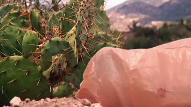Conmueve hallazgo de perros muertos en bolsa