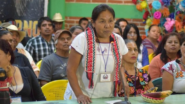 Médica nahua, candidata indígena a Presidenciales