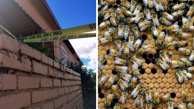 Brutal ataque de abejas en residencia