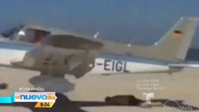 ¡Una avioneta casi le vuela el bañador!