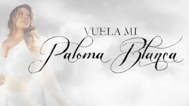 "Chiquis se lanza con ""Paloma blanca"""