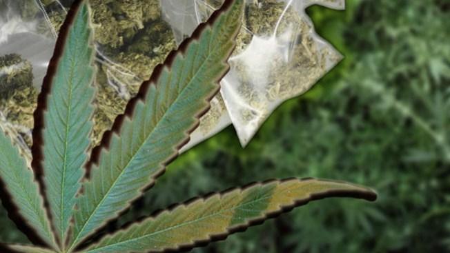 Cultiva marihuana en su casa