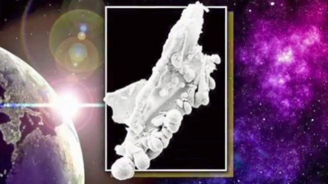 ¿Será la prueba de vida extraterrestre?